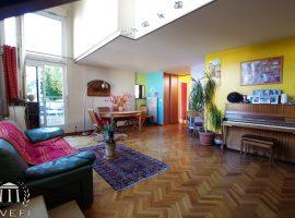 Superbe Duplex Loft à Sevres